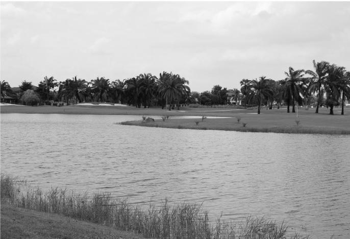 Thanya Golf Club Cover